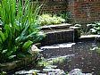 Punica Peyzaj - Bahçe Düzenleme