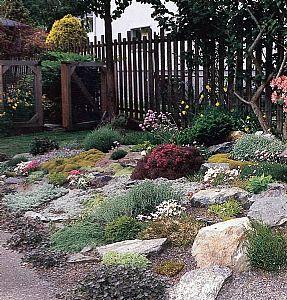Punica Peyzaj - Kaya bahçeleri
